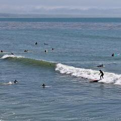 Surfers at Pleasure Point, Santa Cruz