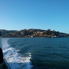 Leaving Tiburon by ferry