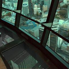 Glass Floor at Sky Tower