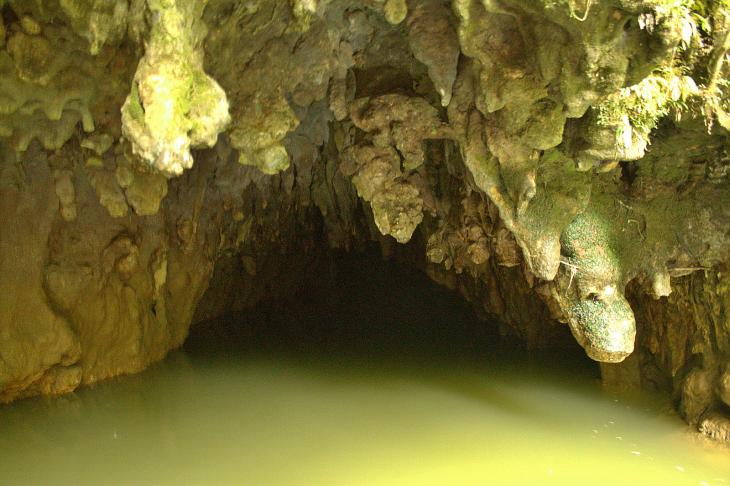 Waitomo Glow-worm Cave (Entrance)