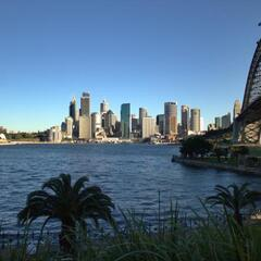 Sydney as seen from Kirribilli