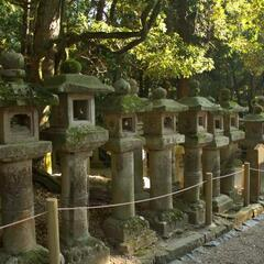 Toro (Stone lanterns) near Kasuga Taisha Shrine