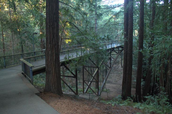 Kresge College Bridge