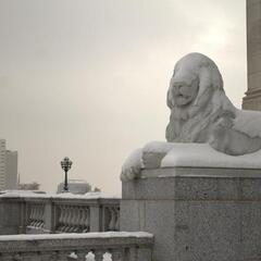 Lion at Utah State Capitol