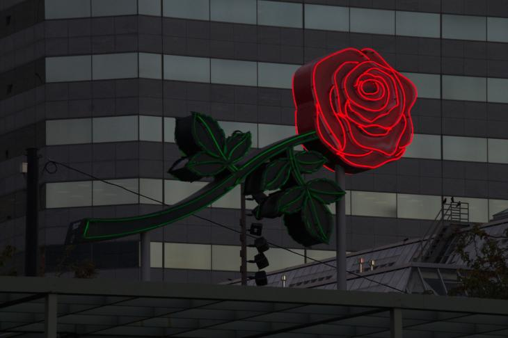 "Portland, the ""City of Roses"""