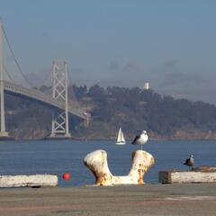 Bay Bridge and Yerba Buena Island in the background