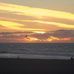 Sunset at Ocean Beach