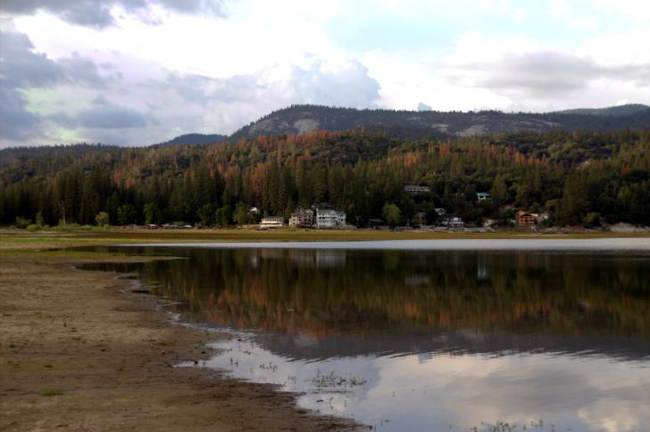 Bass Lake and The Pines