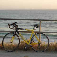 My Bike at Manresa State Beach