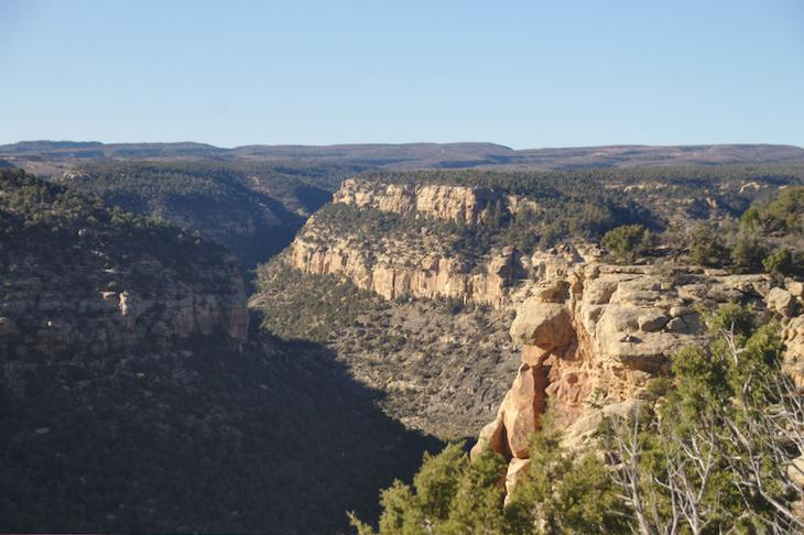 Navajo Canyon View