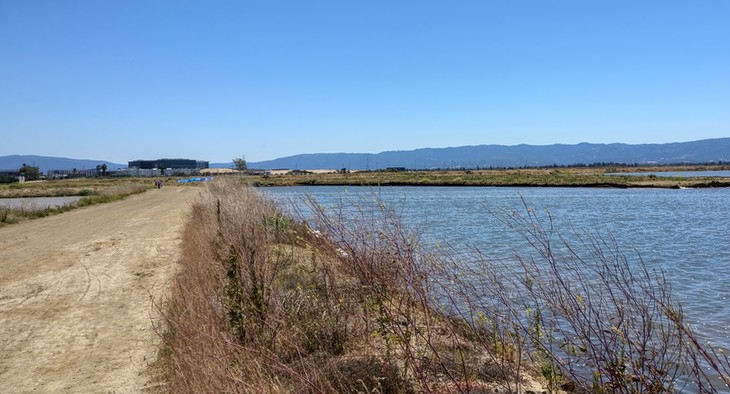 South Bay Wetlands