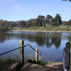 """Mountain Lake"" near Presidio Golf Course"