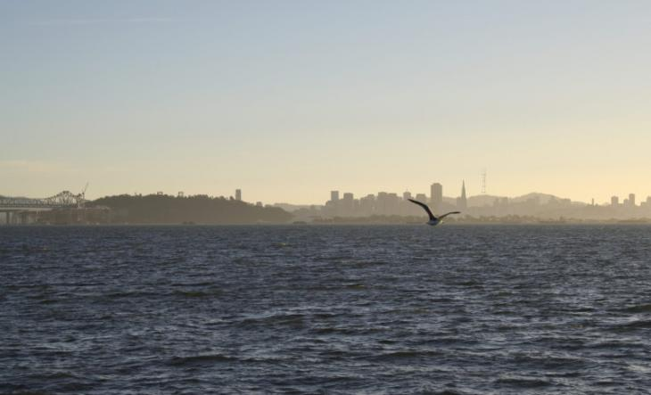 San Francisco as seen from the Berkeley Marina